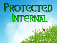 protected-internal