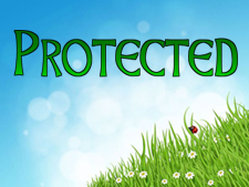 protected-specifiers