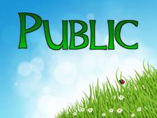 public-specifiers