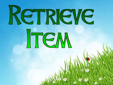 retrieve-items