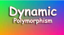 Dynamic Polymorphism in C# with Programming Example