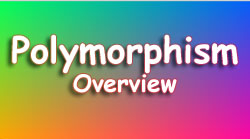 Overview of Polymorphism – C#